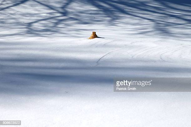 Fire hydrant stands buried in snow on January 24, 2016 in Forest Hill, Maryland. Heavy blanketed the Mid-Atlantic region with upwards of 30 inches of...
