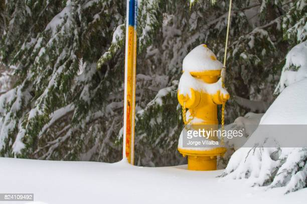 Fire hydrant with snow