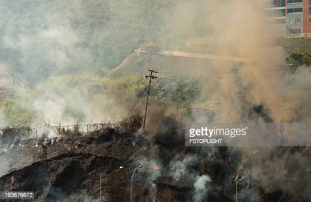 fire in the hill - fstoplight stock photos and pictures