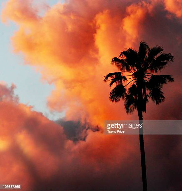 fire in the sky - california wildfire stock pictures, royalty-free photos & images