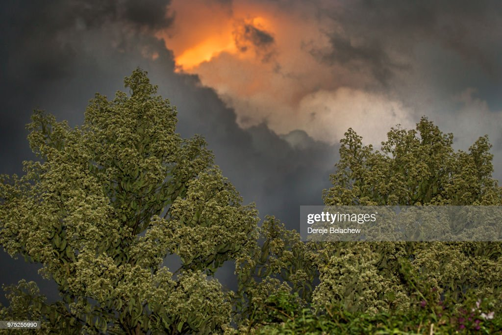 Fire in the sky : Stock Photo