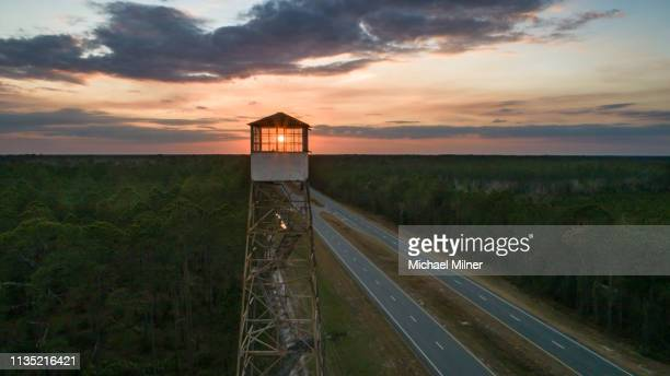 fire lookout tower sunset - lookout tower stock pictures, royalty-free photos & images