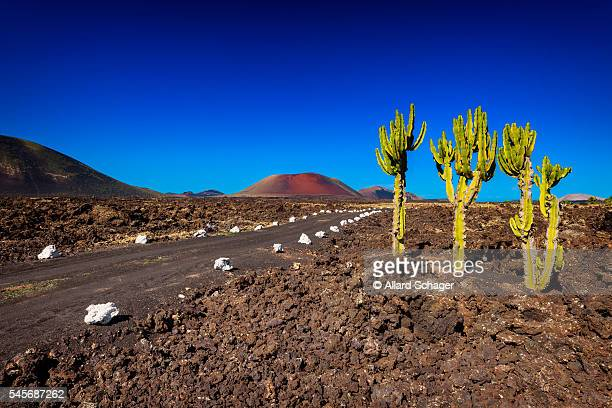 fire mountains lanzarote - timanfaya national park stock pictures, royalty-free photos & images