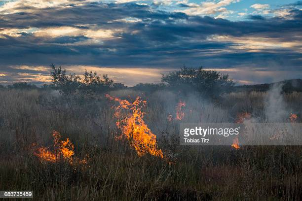 Fire on grassy field against cloudy sky during sunset, Newman, Western Australia, Australia