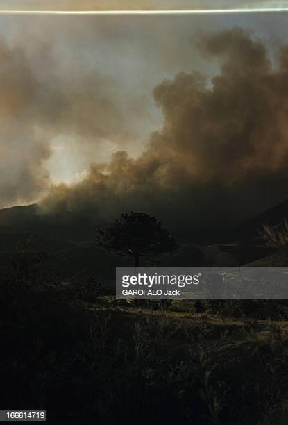 Fire On The French Rivieira Côte d'azur période 1960 Incendie sur la forêt domaniale de l'Esterel Un nuage de fumée s'élève sur les collines et...