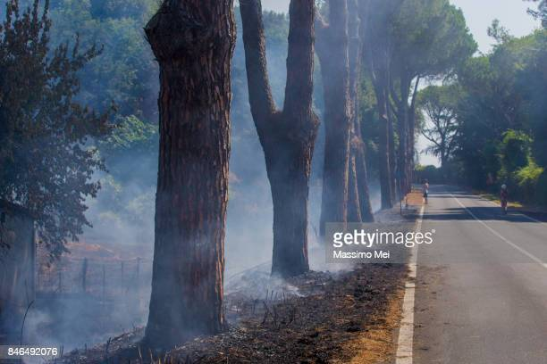fire on the road around the lake - helicopter photos stock pictures, royalty-free photos & images