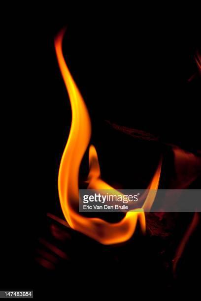 fire - eric van den brulle photos et images de collection
