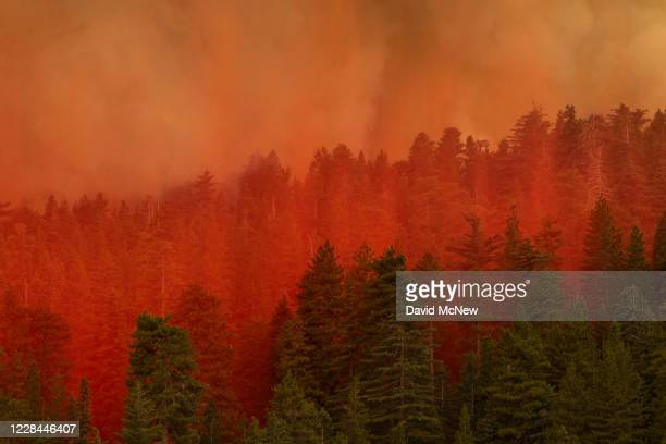 Fire retardant from a Coulson 737 firefighting tanker jet falls on a forest to slow the Bobcat Fire at the top of a major run up a mountainside in...
