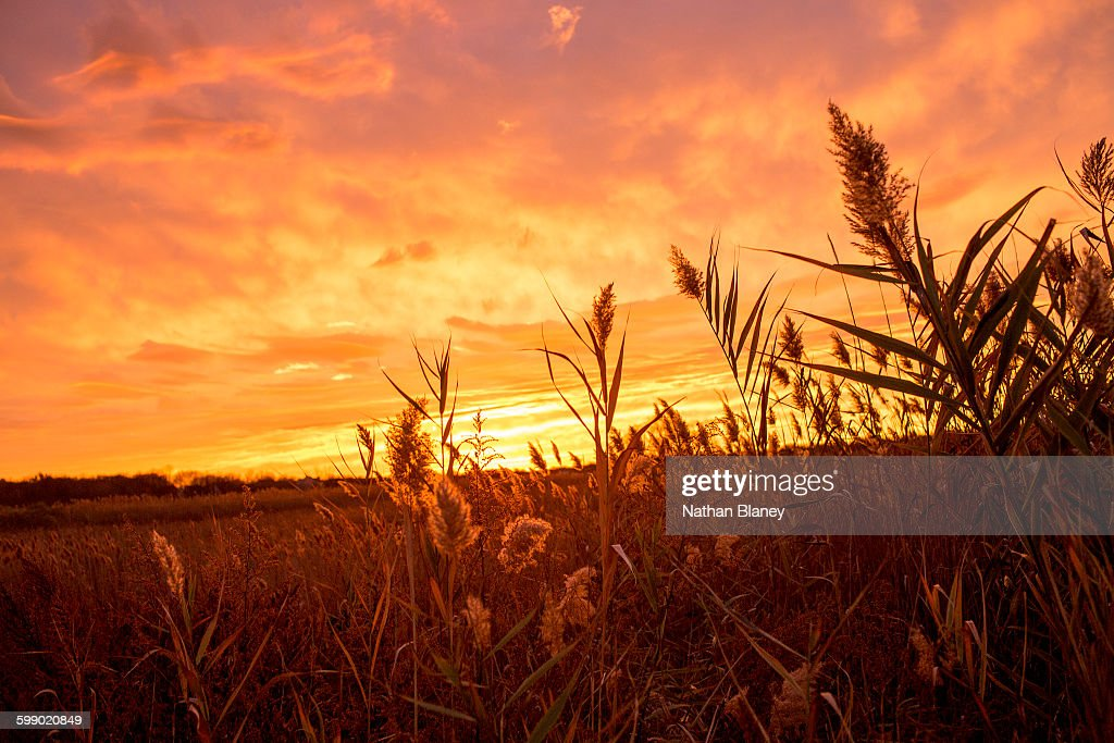 Fire Sky : Stock Photo