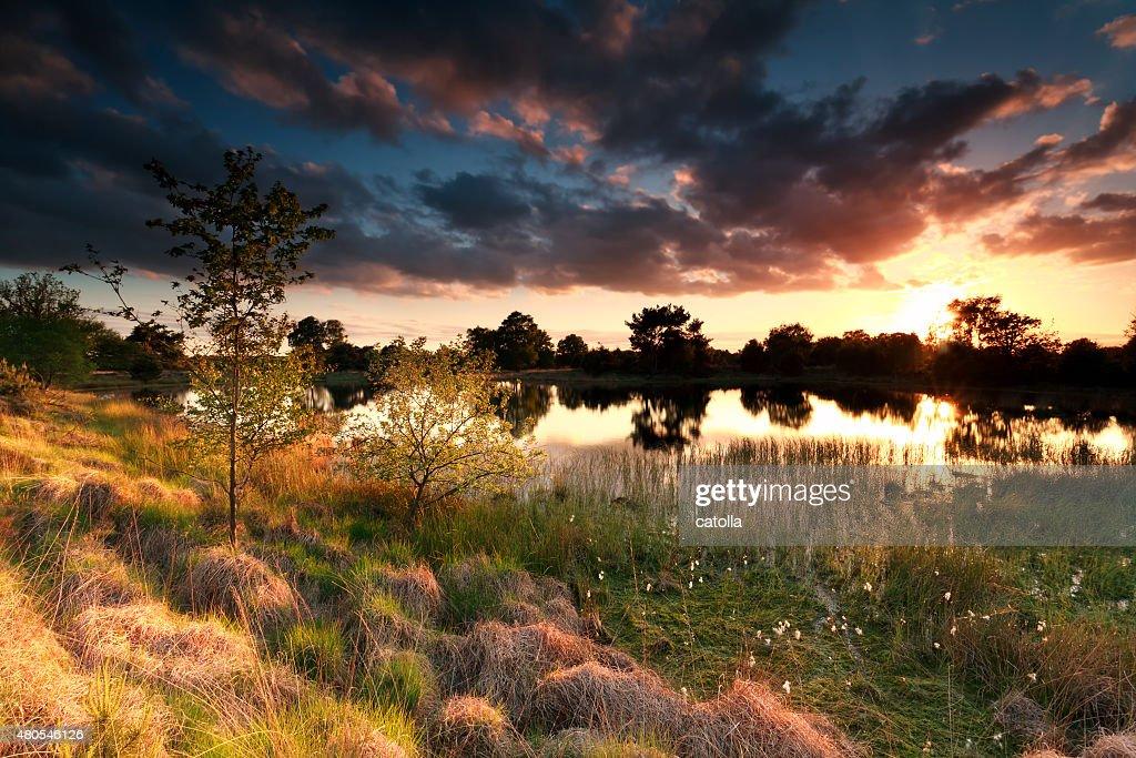fire sunset on wild lake : Stock Photo