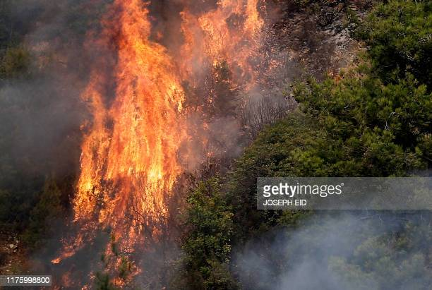 Fire takes out forests in the mountainous area that flank Damour river near the village of Meshref in Lebanon's Shouf mountains southeast of the...