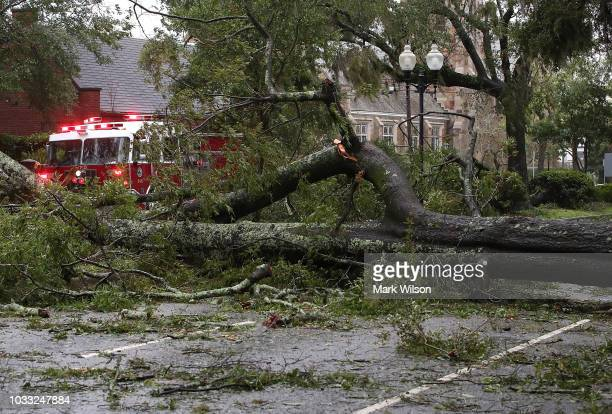 A fire truck drives past a large tree blown over by Hurricane Florence on September 14 2018 in Wilmington North Carolina Hurricane Florence hit...