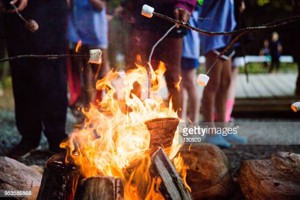 fire up the marshmellow - campfire stock pictures, royalty-free photos & images
