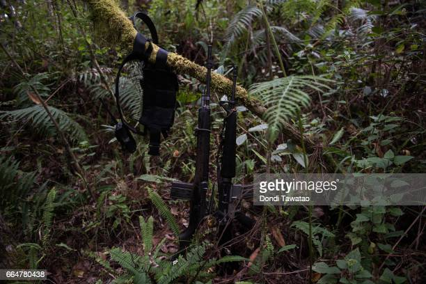 Firearms and a handheld radio lie amid dense vegetation at a camp of the New People's Army on April 1 2017 in the remote hinterlands of Mountain...