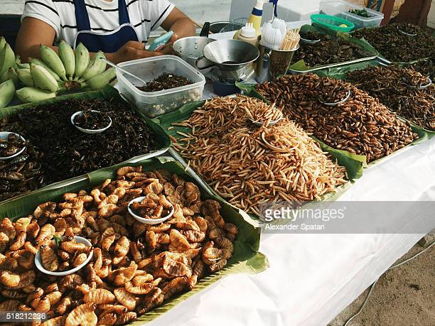Fired insects on street market in Phuket, Thailand