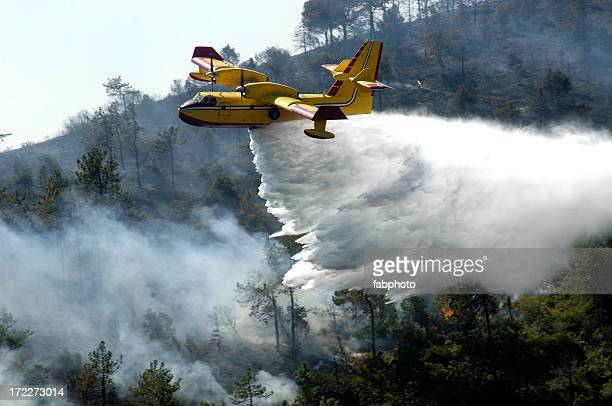 A firefighter airplane putting out a forest fire
