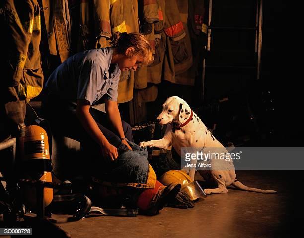 firefighter and dalmatian - dalmata imagens e fotografias de stock