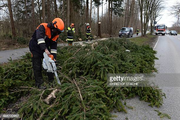 A firefighter attempts to clean the road following a stormy weather near Oberschleissheim southern Germany on March 31 2015 AFP PHOTO/CHRISTOF STACHE