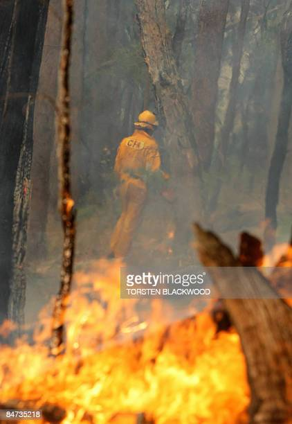 A firefighter checks the containment line near the town of Dederang as bushfires continue to burn out of control in the Victoria Alps on February 11...