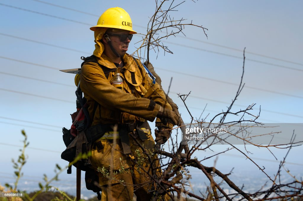 Firefighter clears dry brush while fighting a wildfire burning in Mandeville Canyon near the Getty Center in Los Angeles, California on May 28, 2017. More than 150 firefighters battle the fire that burns near multi-million dollar homes in the Brentwood neighborhood.