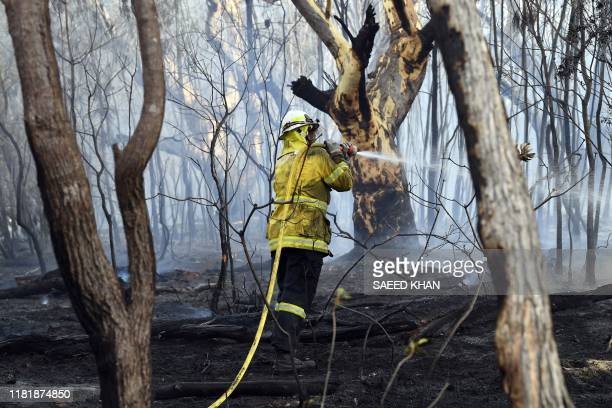 A firefighter doses a bushfire in the residential area of Sydney on November 12 2019 Bushfires raging across eastern Australia on November 12 singed...