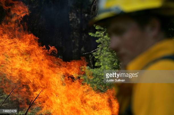 Firefighter Dylan Tabish looks at a fire burning during a live fire training at the Lubrecht Forest Camp June 14 2007 in Greenough Montana In...
