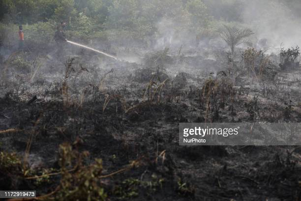 A firefighter extinguishes the fire on burned peatland and forest in Palangka Raya Central Kalimantan province Indonesia October 1 2019 Firefighters...