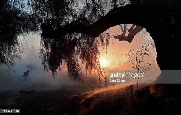 A firefighter is enveloped in thick smoke while battling the Creek Fire in Shadow Hills on Tuesday Dec 5 2017 The fire started at about 342 am in the...