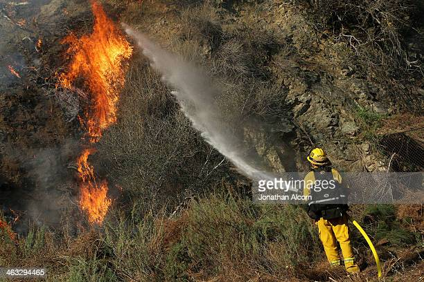 Firefighter Jeff Newby sprays water on a flareup at the Colby Fire burning for a second day in the hillside above Highway 39 on January 17 2014 in...