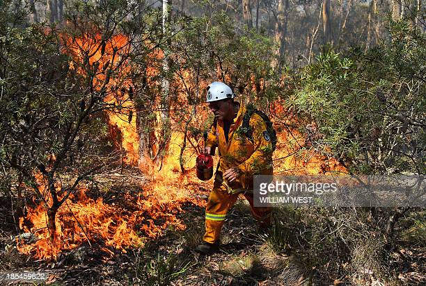 A firefighter lights a back burn near Mount Victoria in the Blue Mountains on October 21 as volunteer fire brigades race to tame an enormous blaze...
