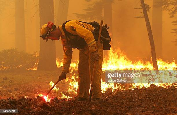 Firefighter lights a backfire as the Angora fire approaches homes June 26, 2007 in South Lake Tahoe, California. Firefighters continue to battle the...