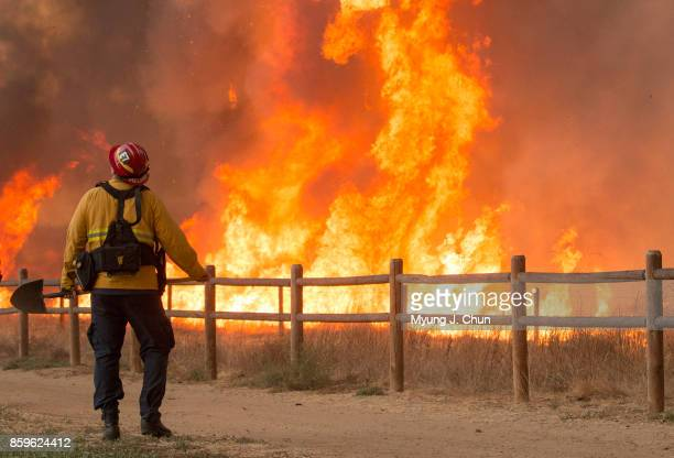 A firefighter looks up at a water dropping helicopter circling the fire at Peters Canyon Regional Park on October 9 2017 in Orange County California
