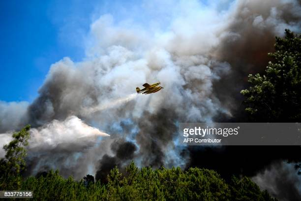 A firefighter plane drops water on a wildfire at Vale Formoso village in Sardoal on August 17 2017 / AFP PHOTO / PATRICIA DE MELO MOREIRA