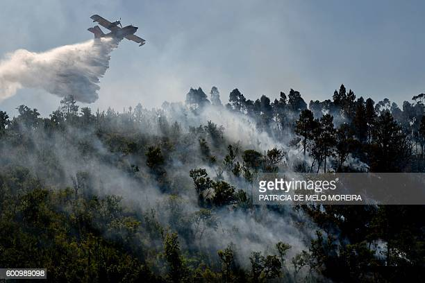 Firefighter plane helps extinguishing a wildfire at Monchique, Algarve, southern of Portugal on September 9, 2016. / AFP / PATRICIA DE MELO MOREIRA