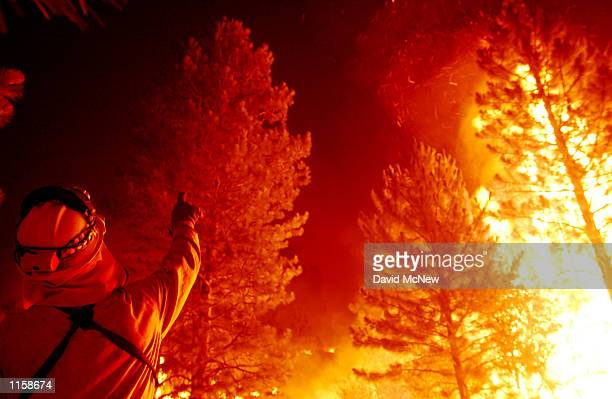 A firefighter points to a squirrel in a burning tree after a backfire is set in an attempt to protect the evacuated community of Johnsondale July 23...