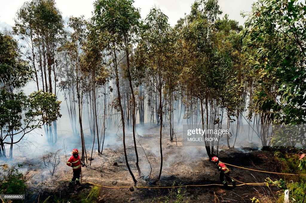 A firefighter pulls a hose as they combat a wildfire in Vale da Ponte, Pedrograo Grande, on June 20, 2017. The huge forest fire that erupted on June 17, 2017 in central Portugal killed at least 64 people and injured 135 more, with many trapped in their cars by the flames. RIOPA