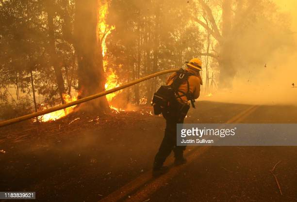 A firefighter pulls a hose to spray water on a burning tree as he battles the Kincade Fire on October 27 2019 in Windsor California Fueled by high...