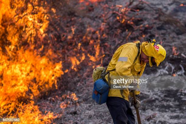 A firefighter recoils from the heat of flames at the La Tuna Fire on September 2 2017 near Burbank California Los Angeles Mayor Eric Garcetti said at...