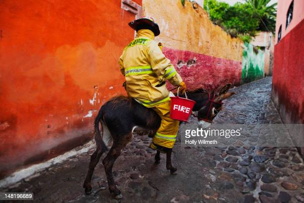 firefighter riding donkey in alley - mexican riding donkey stock photos and pictures
