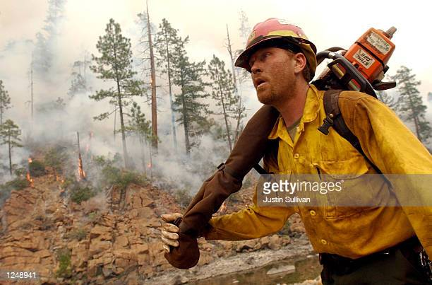 O'BRIEN OR AUGUST 4 Firefighter Ross Johnson walks past smoldering trees after Hot Shot fire crews lit a burnout fire in the Siskiyou National Forest...