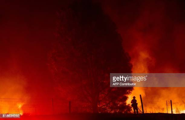 TOPSHOT A firefighter sprays down flames as the Detwiler fire rages on near the town of Mariposa California on July 18 2017 California has suffered...
