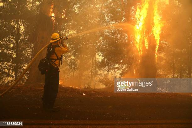 A firefighter sprays water on a burning tree as he battles the Kincade Fire on October 27 2019 in Windsor California Fueled by high winds the Kincade...