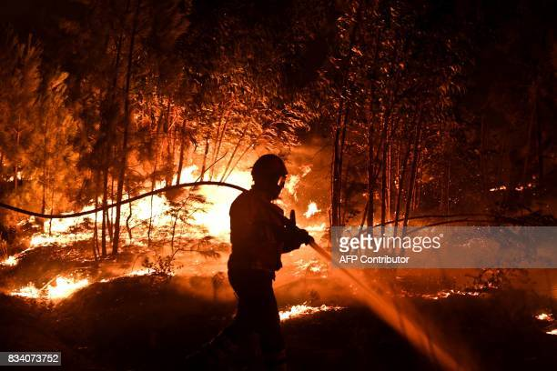 A firefighter tackles a wildfire at Macao on August 17 2017 / AFP PHOTO / PATRICIA DE MELO MOREIRA
