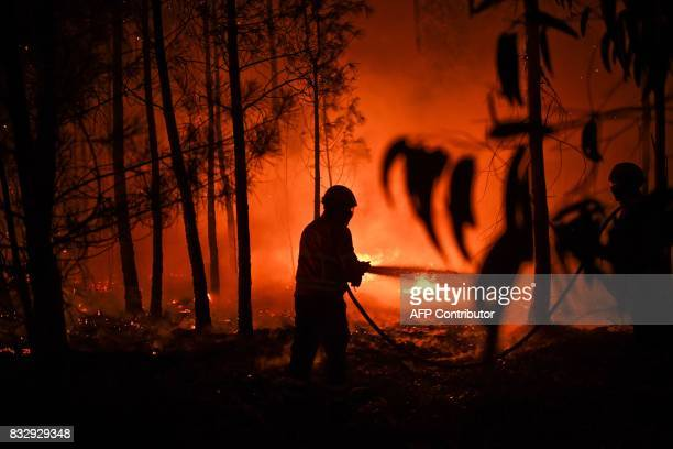 A firefighter tackles a wildfire at Vale de Abelha village in Macao on August 16 2017 / AFP PHOTO / PATRICIA DE MELO MOREIRA