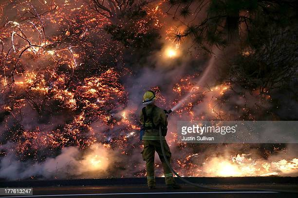 A firefighter uses a hose to douse the flames of the Rim Fire on August 24 2013 near Groveland California The Rim Fire continues to burn out of...