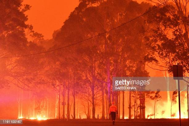 TOPSHOT A firefighter walks past burning trees during a battle against bushfires around the town of Nowra in the Australian state of New South Wales...