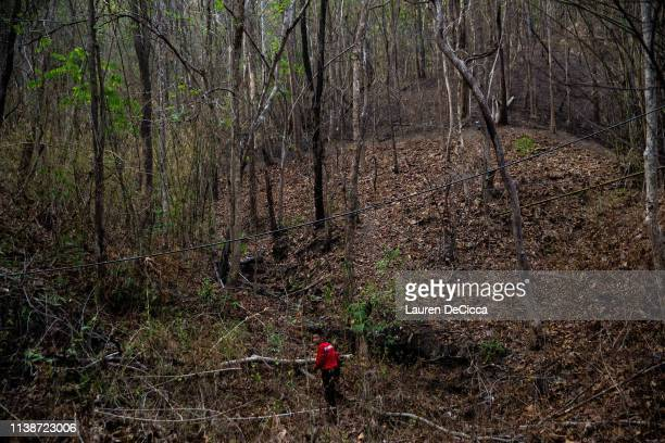A firefighter walks through a part of the forest that was charred during a forest fire on April 22 2019 in Chiang Mai Thailand Thailand's Northern...