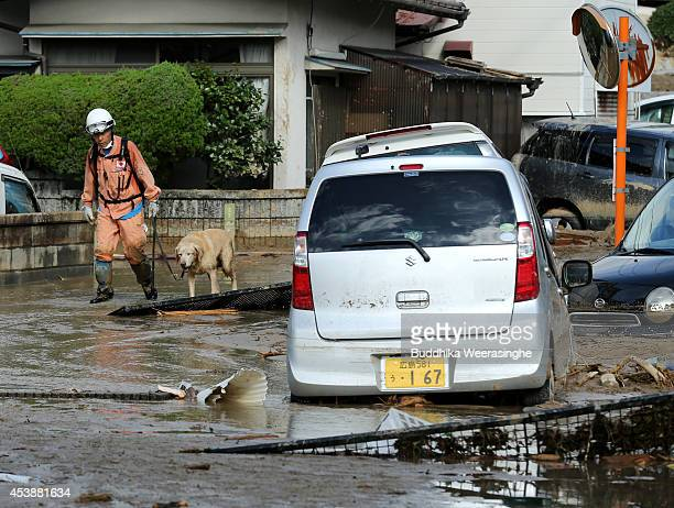 Firefighter walks with rescue dog as continue the search for missing people among the debris of houses destroyed by a landslide caused by torrential...