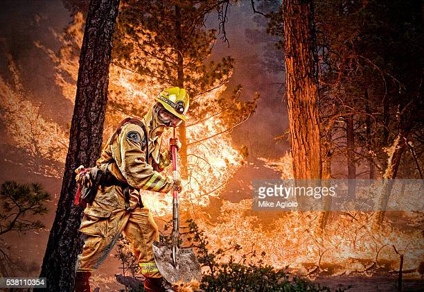 firefighter working on forest fire - mike agliolo stock pictures, royalty-free photos & images