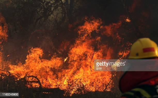 A firefighter works during a wildfire near Robore Santa Cruz region eastern Bolivia south of the Amazon basin on August 22 2019 Up to now wildfires...